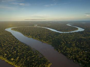 O Pantanal é um dos biomas existentes em Mato Grosso