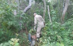 Alta Floresta: Pai aciona Corpo de Bombeiros para procurar filho desaparecido em área de mata