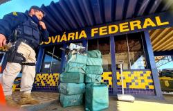 PRF encontra 466 kg de droga em carga de carne de caminhão frigorífico em MT