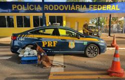 PRF apreende drogas que estavam dentro de ônibus no município de Poconé-MT