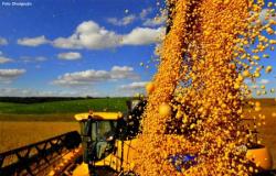 OTIMISMO: Aumenta a expectativa de crescimento do agro