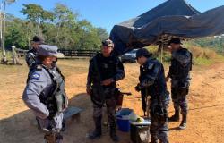 PM e Ciopaer sobrevoam região de mata onde bandidos do 'Novo Cangaço' podem estar escondidos