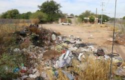 Alta Floresta: prefeitura cobra ações da comunidade para a questão do lixo e de lotes sujos