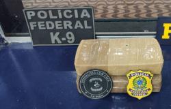 PRF, em ação conjunta com a PF, prende mulher por tráfico de drogas em Rondonópolis/MT