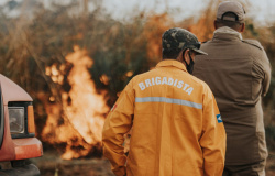 Alta Floresta: Secretaria de Meio Ambiente e Bombeiros Militar finalizaram Curso de Brigadista