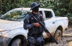 Apiacás, Nova Bandeirantes e mais 8 municípios que mais desmatam em MT são principais alvos da Operação Amazônia