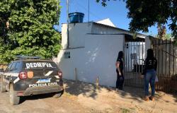 Ações investigativas da Polícia Civil levam à prisão 151 pessoas por crimes contra crianças e adolescentes