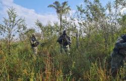 Nova Bandeirantes: Assaltantes podem ter morrido se escondendo do Bope