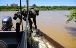 Multa para pesca ilegal com rede pode chegar a R$ 100 mil em Mato Grosso