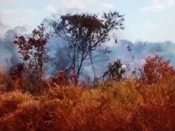 Após formação de brigada comunitária, agricultores familiares controlam princípio de incêndio em Nova Bandeirantes