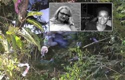 MT-208: Duas profissionais da saúde de Nova Monte Verde morreram após carro sair de pista e atingir árvores