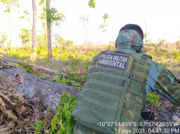 Juara: Policiais prendem proprietário de área rural por desmate e posse ilegal de arma