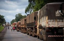 Ferrogrão mobiliza ativistas e obriga governo a reação
