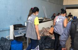 MT - Polícia apreende 15 toneladas de carne roubadas de caminhão na BR-164