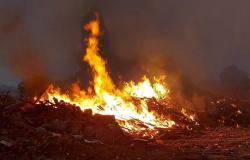 Brigada Municipal Mista e Corpo de Bombeiros combatem focos de incêndio em Nova Monte Verde