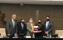 Mato Grosso participa de elaboração de Guia para Combate a Incêndios Florestais