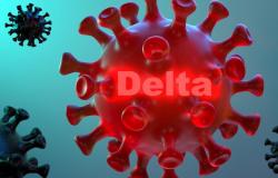 Secretaria de Saúde de AF emite nota sobre circulação da variante Delta