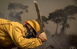 Há 3 dias, fogo em Nova Ubiratã já consumiu 19 mil hectares de vegetação
