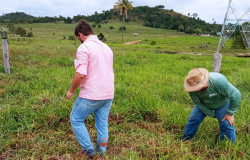 Alta Floresta: Unemat é parceira na produção de biopesticida para braquiária
