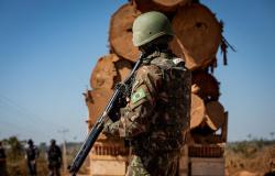 Mato Grosso recebe reforço da Força Nacional para combater crimes ambientais