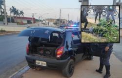 MT - Motorista atropela PM, troca tiros com policiais e foge para matagal