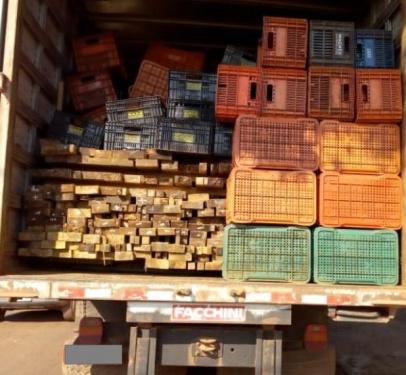Policia Civil apreende carga ilegal de madeira e prende suspeito