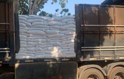 Polícia apreende carga de 50 toneladas de feijão e prende quatro pessoas em MT