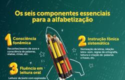 Governo Federal lança livros com estratégias de alfabetização baseadas na ciência