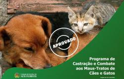 Câmara de Alta Floresta aprova lei que cria o programa de castração e combate aos maus-tratos de cães e gatos