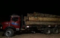 Batalhão Ambiental prende motoristas e apreende madeira ilegal em Marcelândia