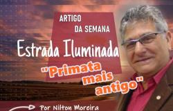 """Estrada Iluminada  """"Primata mais antigo"""""""
