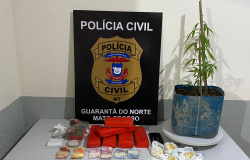 GUARANTÃ DO NORTE: Policiais civis localizam 5,5 quilos de entorpecentes com gerente do tráfico