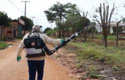 Alta Floresta: Secretaria de Saúde alerta sobre cuidados para evitar criadouros de dengue em período de chuva