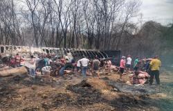 Carreta que transportava carne tomba e carga é saqueada em MT
