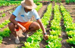 Alta Floresta: Secretaria de Educação realizará reunião com produtores rurais nesta sexta-feira