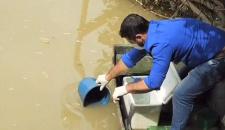 Ministério Público e Sema investigam possível contaminação no Rio Peixoto em MT