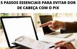 5 PASSOS ESSENCIAIS PARA EVITAR DOR DE CABEÇA COM O PIX