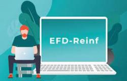 ENTENDA A IMPORTÂNCIA DA EFD REINF PARA OS CONDOMÍNIOS